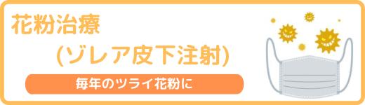 花粉治療(ゾレア皮下注射)